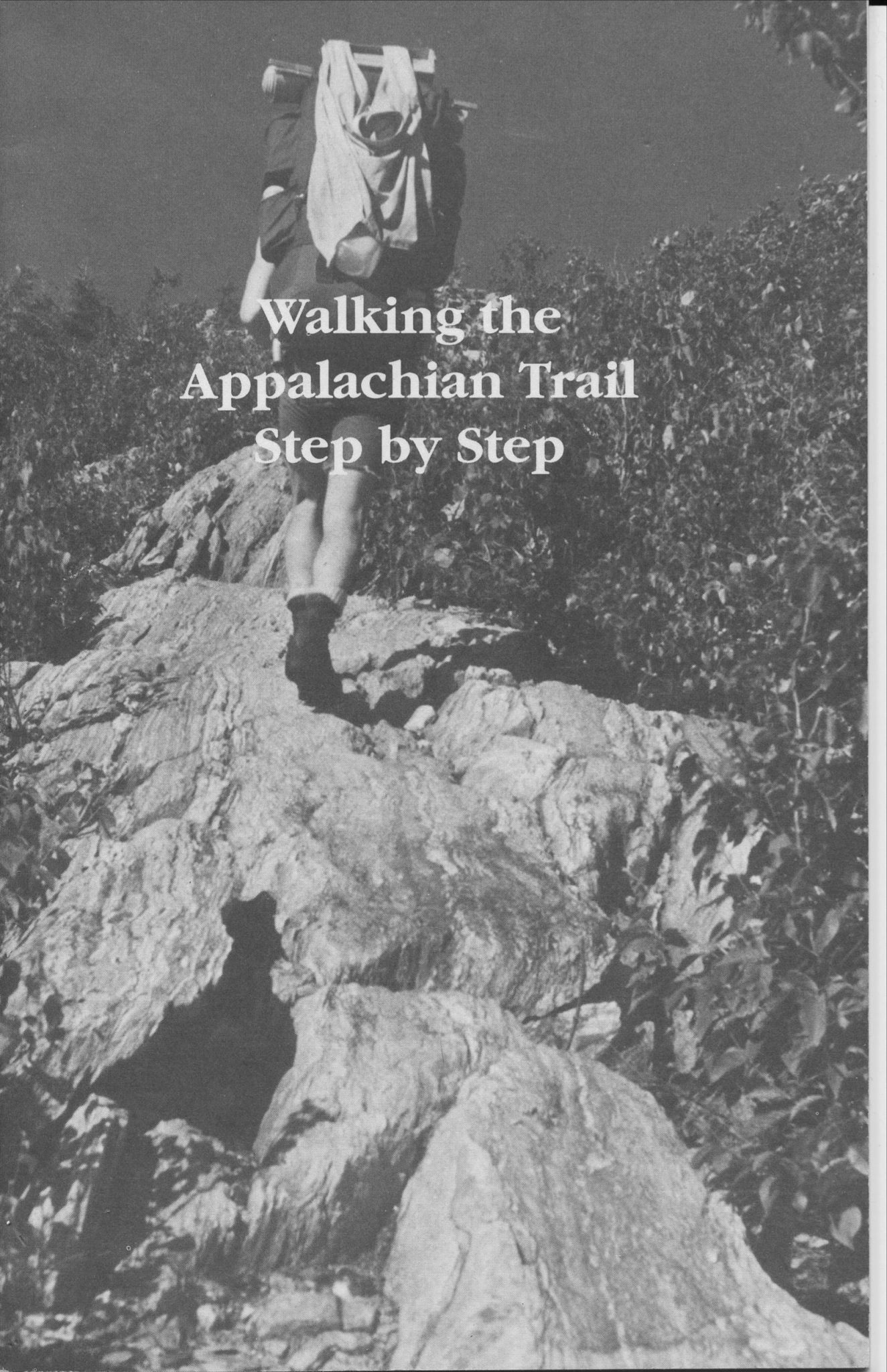 Walking the Appalachian Trail Step by Step